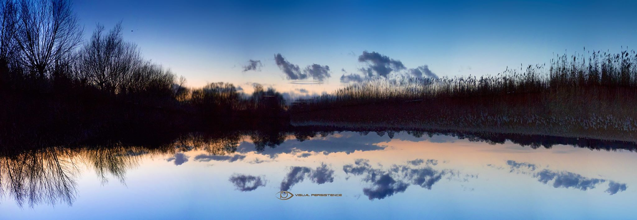 Dusk Reflections at Shapwick Heath